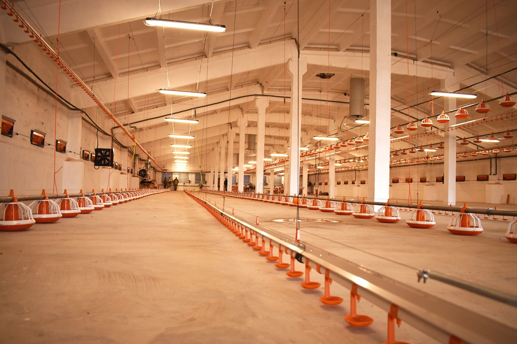 THE DOLGOVGRUPP AGRICULTURAL HOLDING COMPANY LAUNCHES A BROILER POULTRY FACTORY